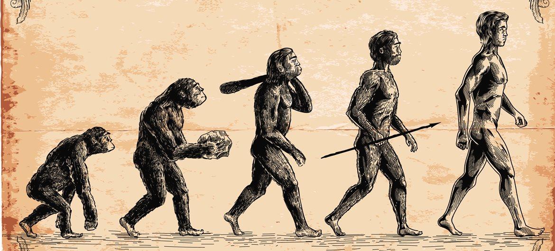 Inilah Seluk Beluk Tentang Scientific Facts & Evolution
