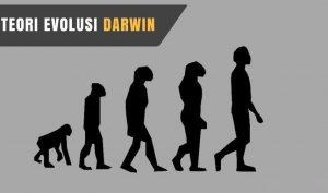 Ketahui Teori Evolusi Darwin