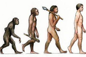 Manfaat Evolusi Darwin Untuk Kehidupan